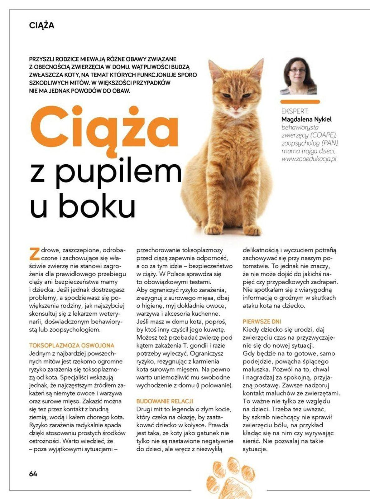 Gazetka promocyjna Tesco do 31/10/2019 str.64
